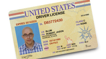 driver's license revocation