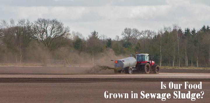 application-of-sewage-sludge-onto-crop-filed