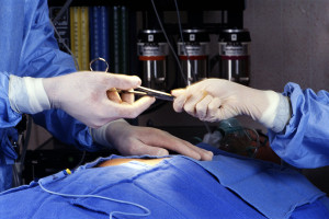 infection mismanagement and malpractice in North Carolina
