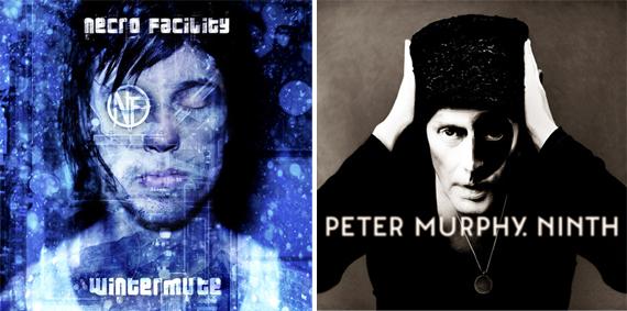 focus : week 23 – Necro Facility and Peter Murphy