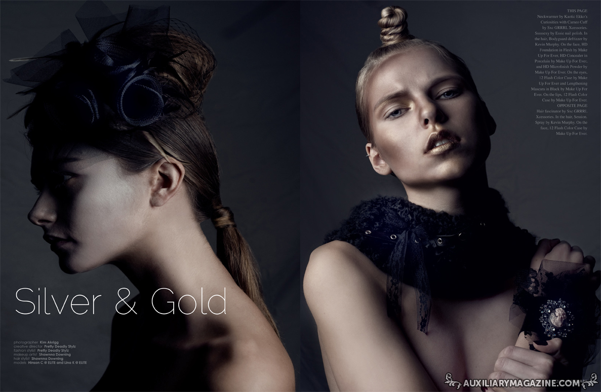 beauty editorial : Silver & Gold