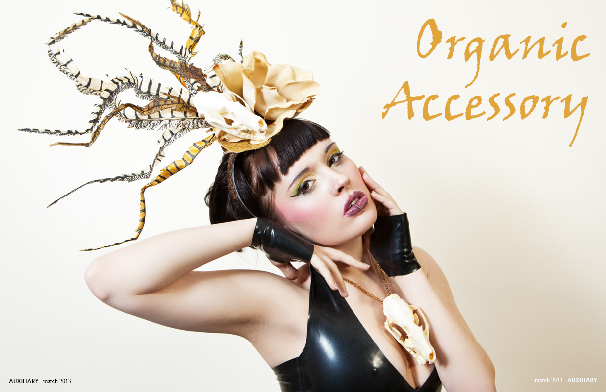 Auxiliary_OrganicAccessory1
