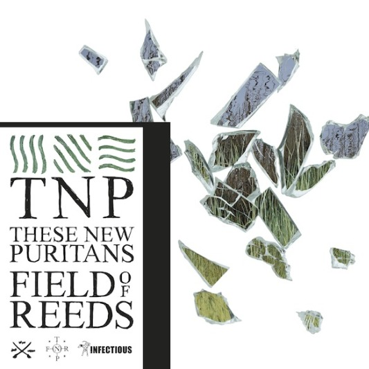 music review : These New Puritans – Field of Reeds