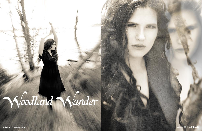 Auxiliary_WoodlandWander