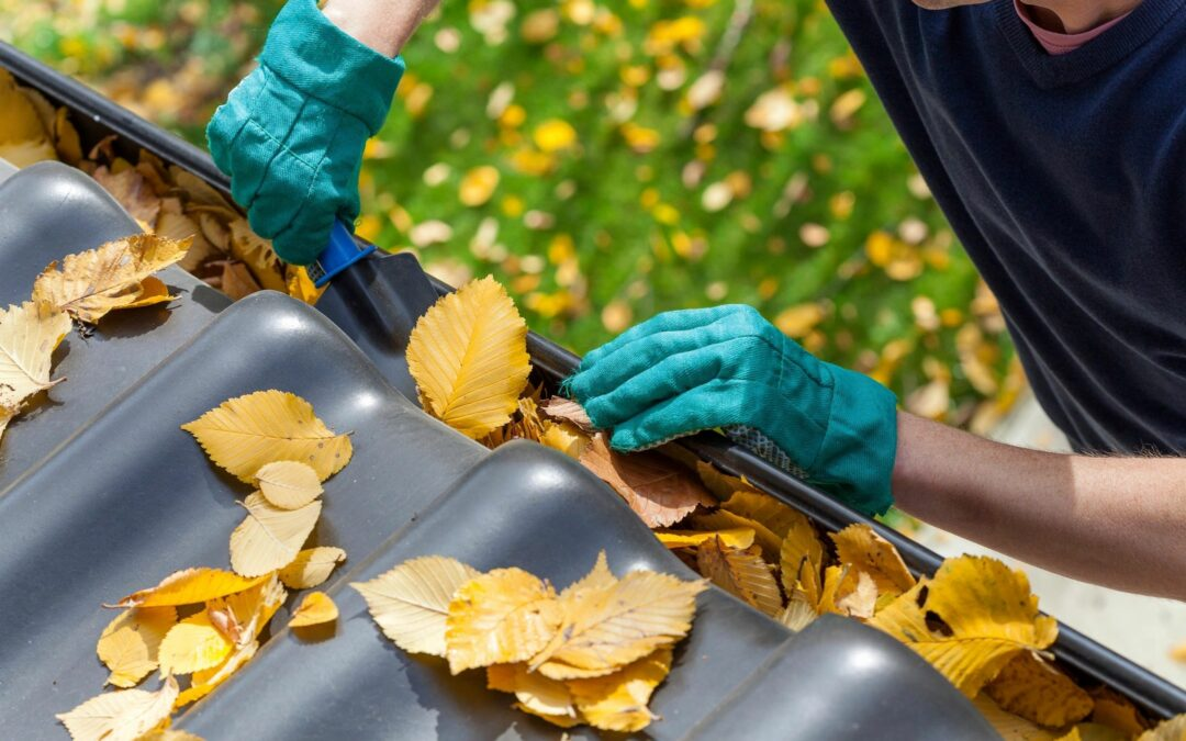 8 Fall Cleaning Tips