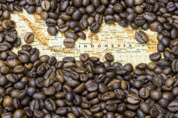 Indonesia surrounded by coffee