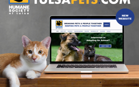 TulsaPets | Animal Website | Animal Website Design | Pets Website | Humane Society Web Designer
