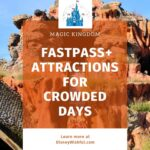 Magic Kingdom Fastpass+ Attractions for Crowded Days