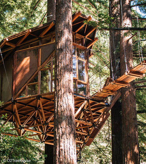 Eagles Nest Tree House Resort – The world's largest and most