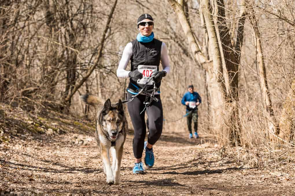 runner and her dog at a canicross trail race
