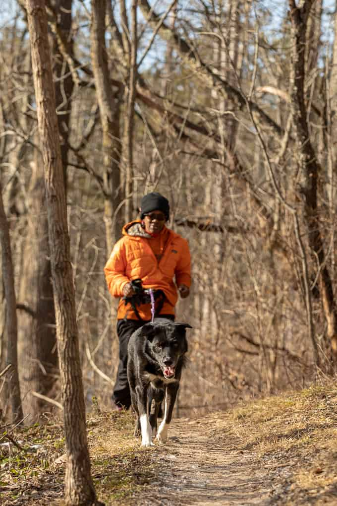 Canicross in Wisconsin Shadow Dog Photography