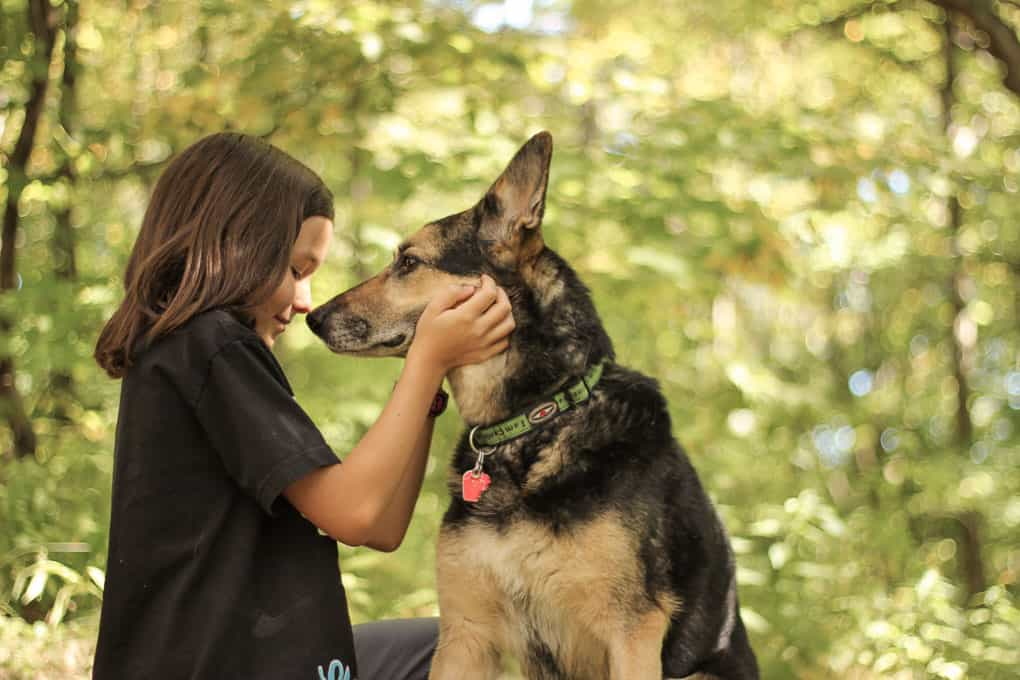 A Girl and Her German Shepherd in a Forest Shadow Dog Photography