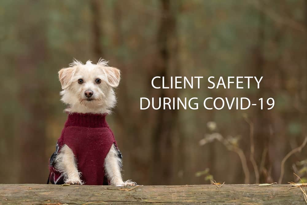 Client Safety During COVID-19