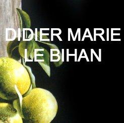 photo Didier Marie Le Bihan - citrons hyperlink2