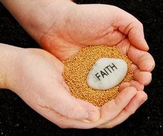faithseeds
