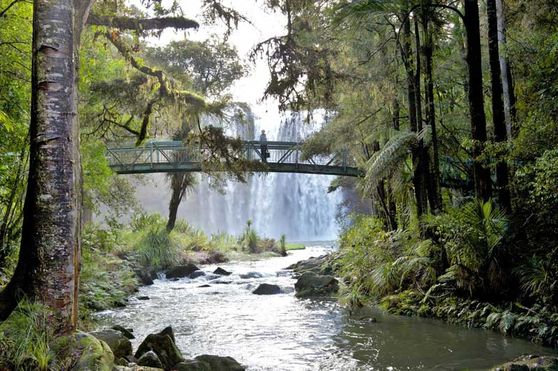 Winterless-North---12411431_ml---Whangarei-Falls