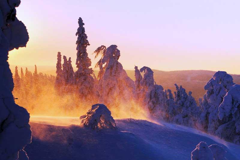 Winter,-Koli---Image-by-Visit-Finland