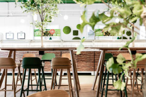 Commercial Office Furniture - Nature Feels Natural