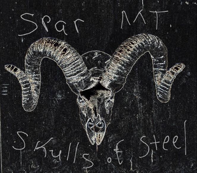 Skulls of Steel