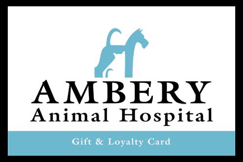 Ambery-Animal-Hospital_GC1