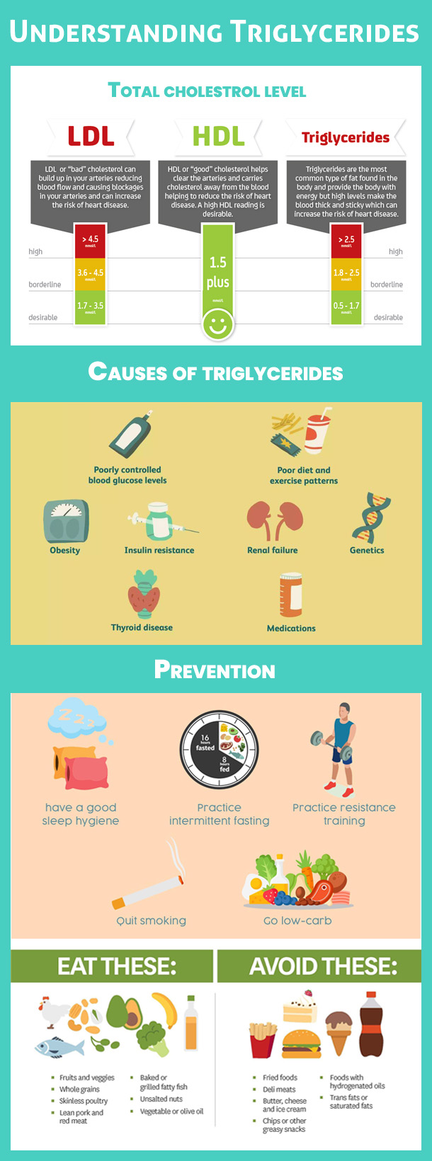 Understanding Triglycerides