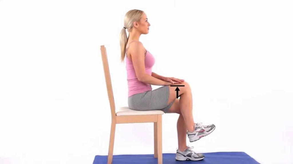 Seated Hip Flexion