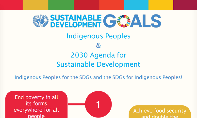 Indigenous Peoples & 2030 Agenda for Sustainable Development