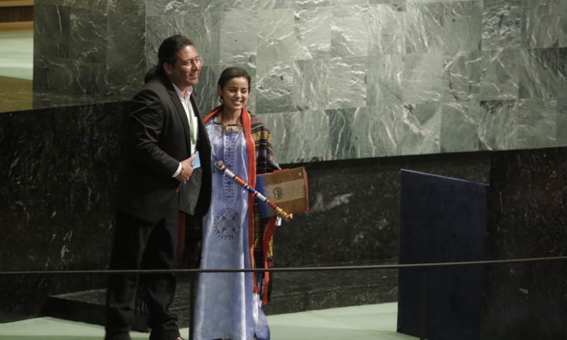 Status of declaration on indigenous peoples' rights in spotlight