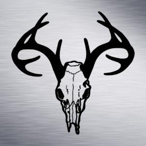 Antler Skull Engraving Design