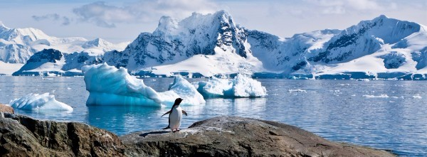 NatHab-Antarctica