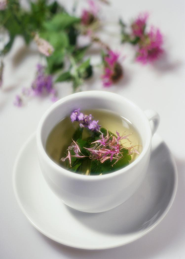 Tea, Infusion, or Tincture?