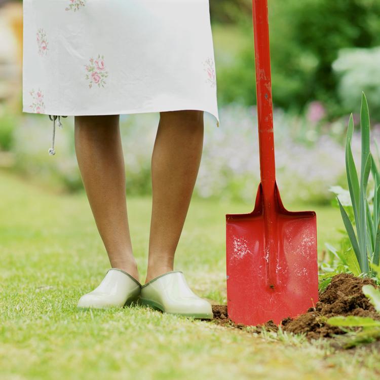 September – Home, Yard, and Lawn Maintenance Calendar