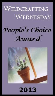 The People's Choice Award