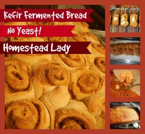 Kefir-Fermented-Bread-Dough-www_homesteadlady_com-you-can-make-cinnamon-rolls-loaf-bread-challah-breadsticks-and-more