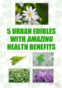 urban_edibles_logo