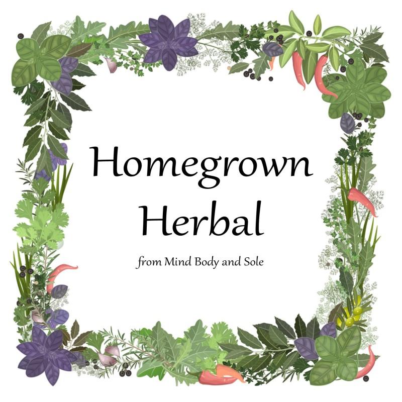 Home Grown Herbal – Basil