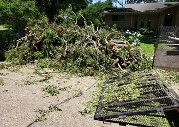 BABIC Experiences Record-Breaking Amount of Debris