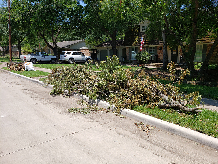 Downed Trees Find New Life as Mulch, Compost