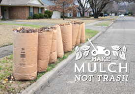 Resolve to Keep Leaves, Grass Out of Landfill; Choose BABIC Instead