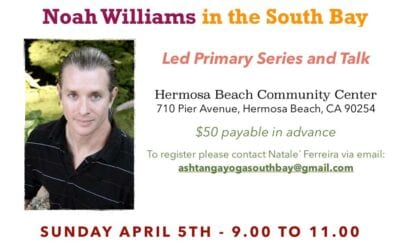 Noah Williams in the South Bay Led Primary Series and Talk
