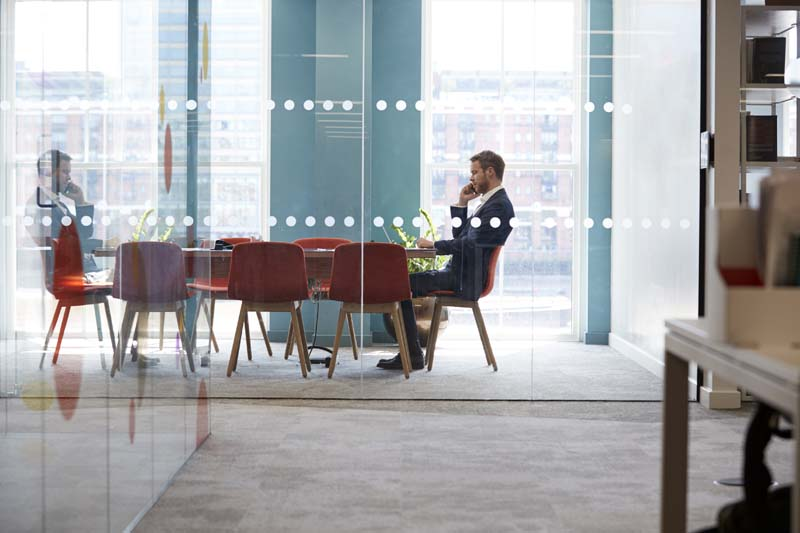 Just One Shareholder: Do I Really Have to have Corporate Board and Shareholder Meetings?