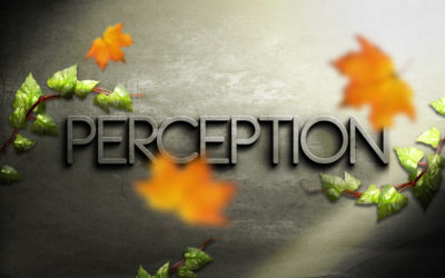 Perceptions and Beliefs
