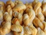 Coreopsis Yarn