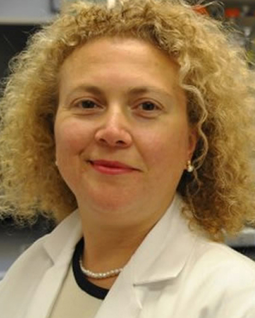 Dr. Hande Ozdinler