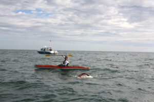 doug mcconnell nantucket to martha's vineyard open water marathon swim