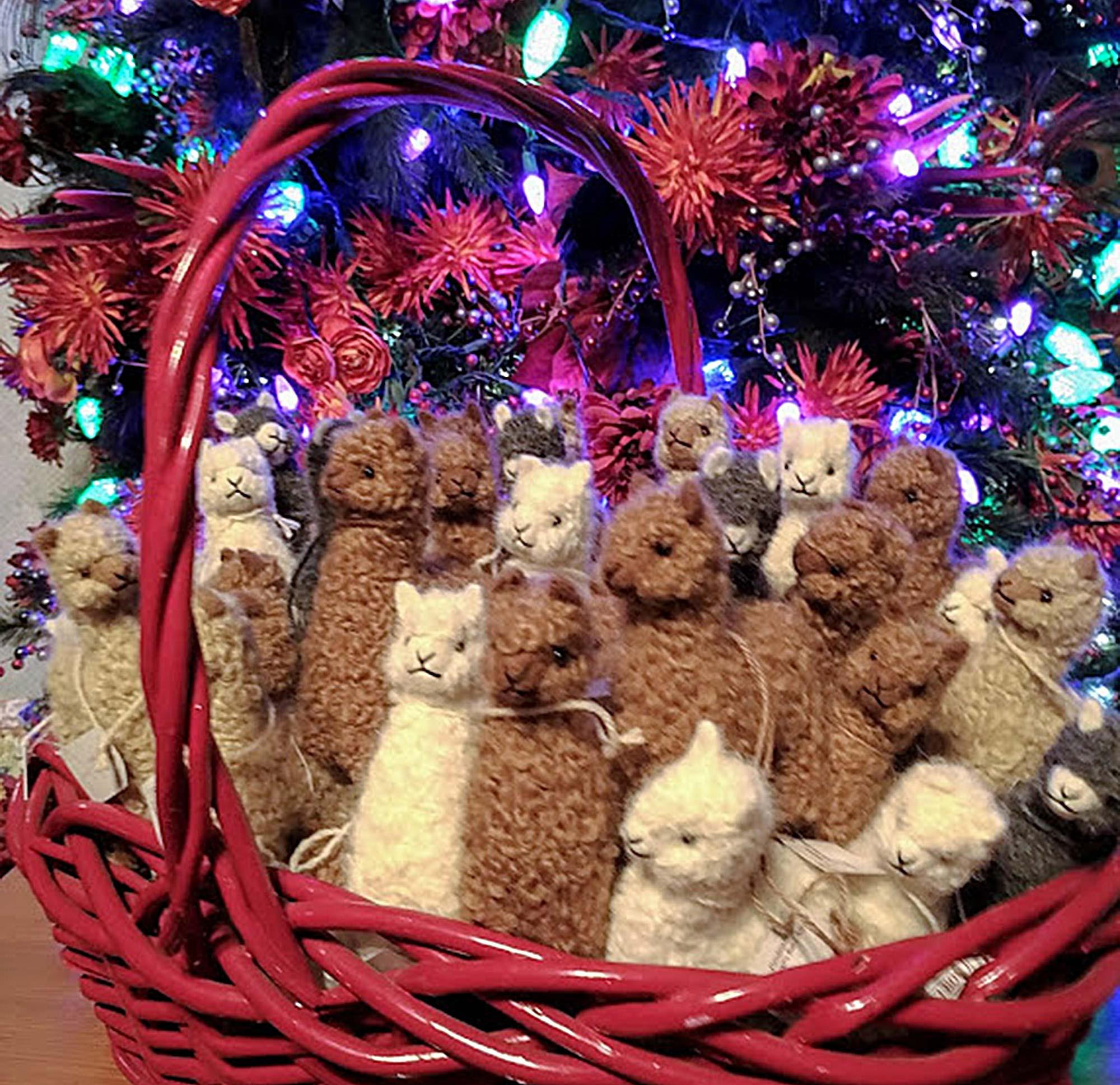 Holiday Christmas Alpaca Shopping