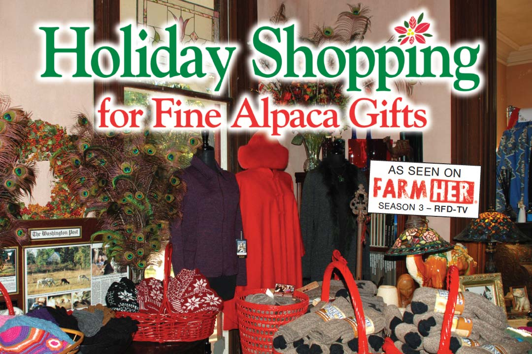 Holiday Shopping for Fine Alpaca Gifts
