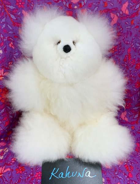 Alpaca bear Kahuna
