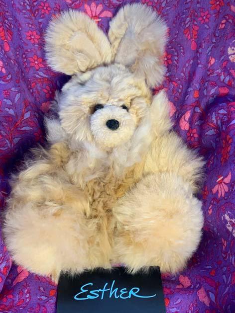 Alpaca bunny Esther
