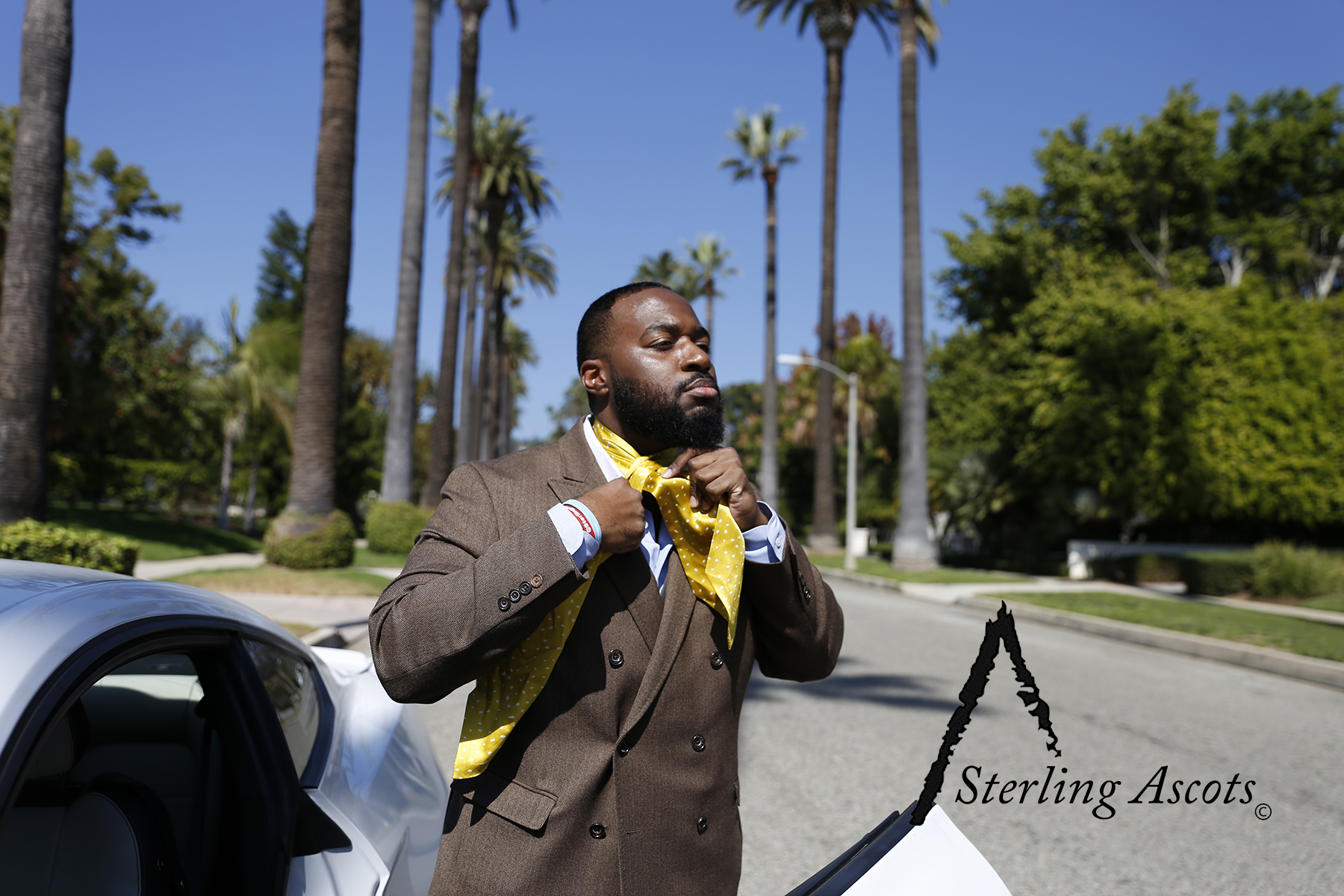 The Medallion Spec Sterling Ascot. This look is comprised of a silk yellow ascot, blue dress shirt, and a double breasted blazer. Shot in Beverly Hills, CA. Available only at SterlingAscots.com